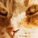 Orange eyes by Danielle Espin