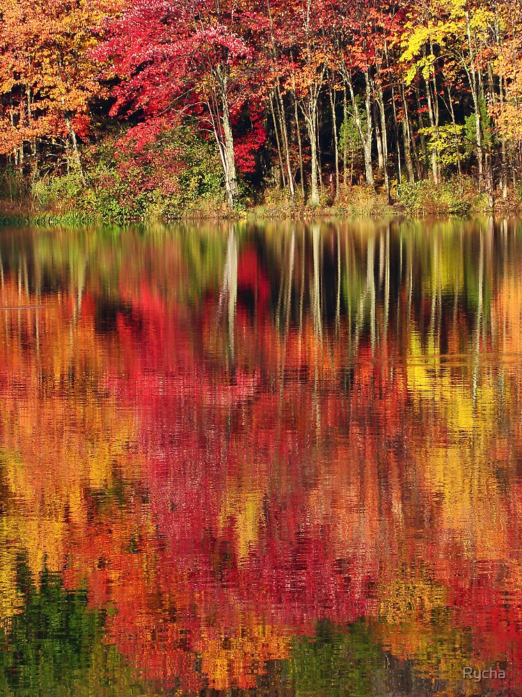 Autumn Reflections by Rycha