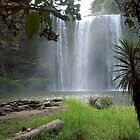 The view from below.......Whangarei Falls.......!! by Roy  Massicks