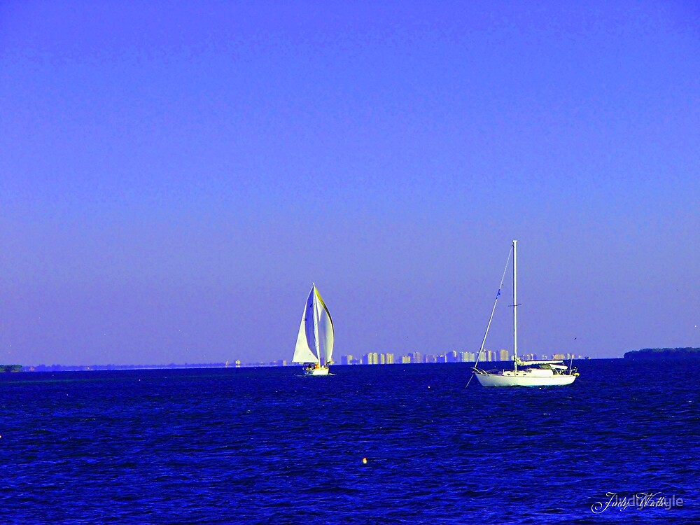 Full Sails by Judy Gayle Waller