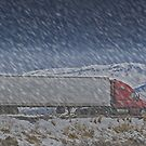 the truck driver 'through hail or high water, the load will get there' by conilouz