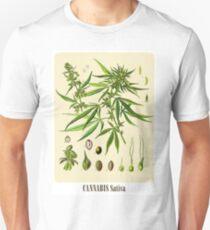 Cannabis Sativa Poster Unisex T-Shirt