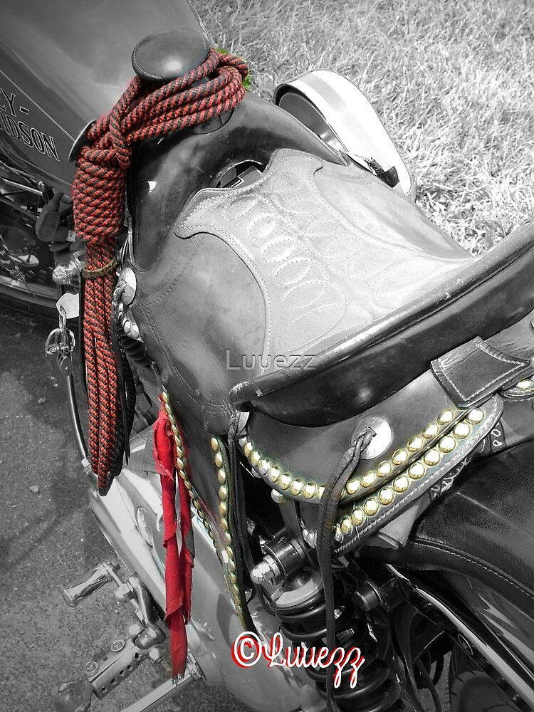 Trick Pony Motorcycle HD by Luuezz