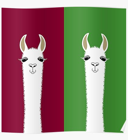 LLAMA PORTRAITS - RED & GREEN Poster