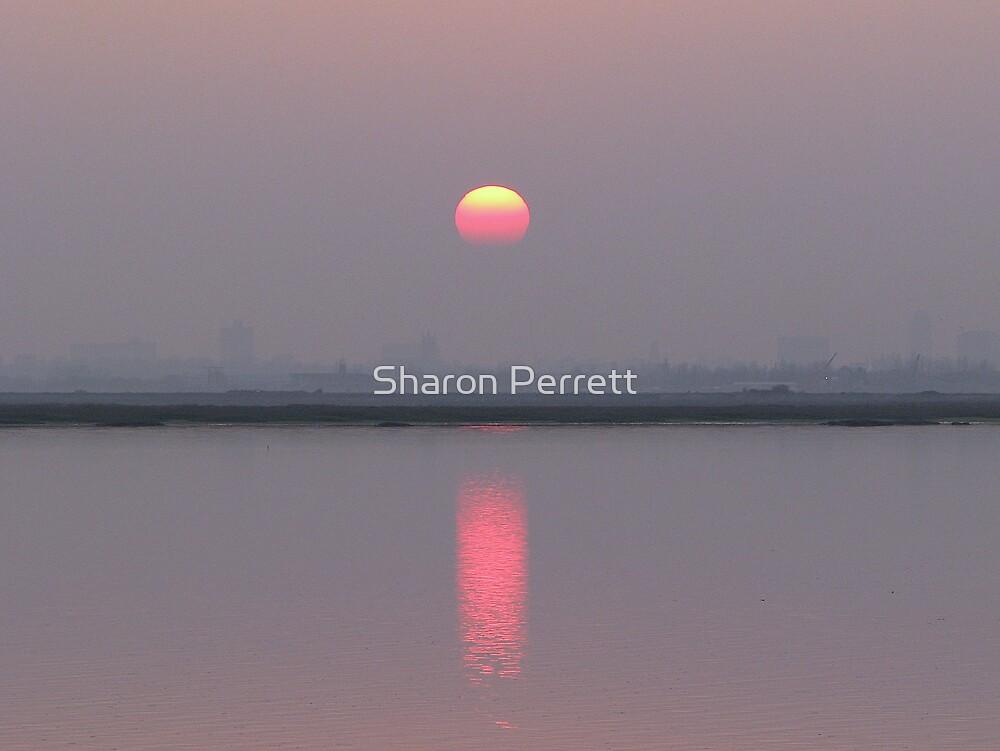 Sunset 1 18-12-07 by Sharon Perrett