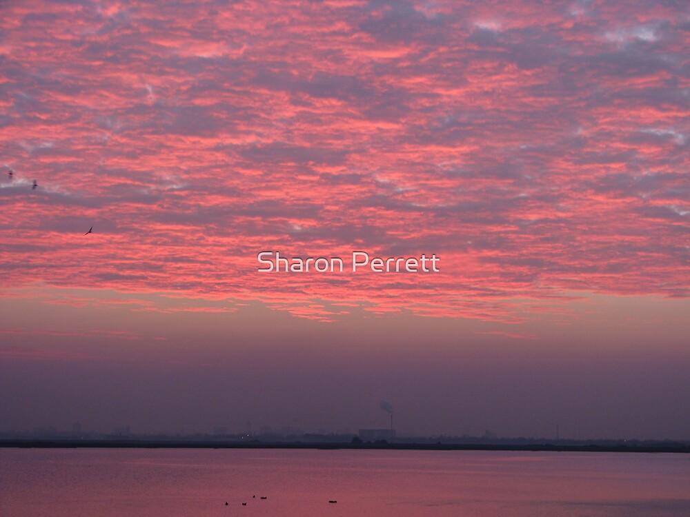 Sunset 3 18-12-07 by Sharon Perrett