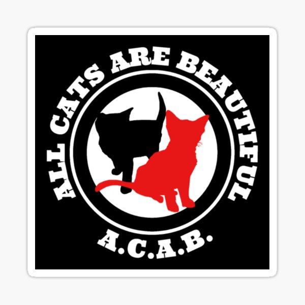 Todos los gatos son hermosos Pegatina