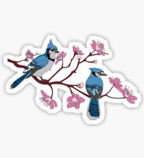 Blue Jays mating Season Sticker