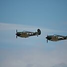 Two Boomerangs,Temora Airshow,Australia 2009 by muz2142