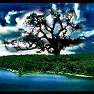 Magic Island by Leah Highland