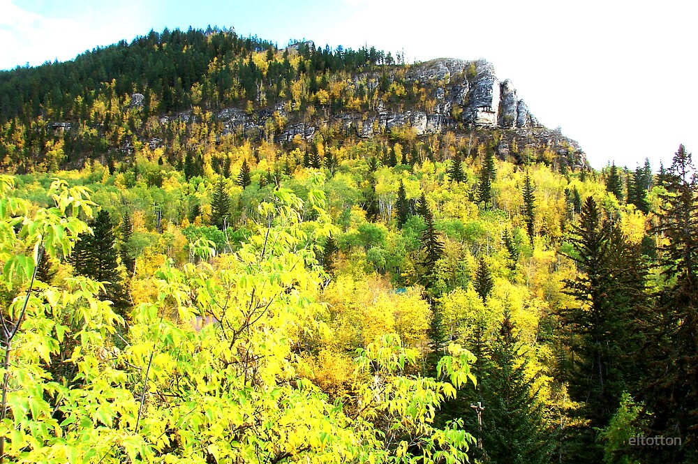 Spearfish Canyon in the Fall. by eltotton