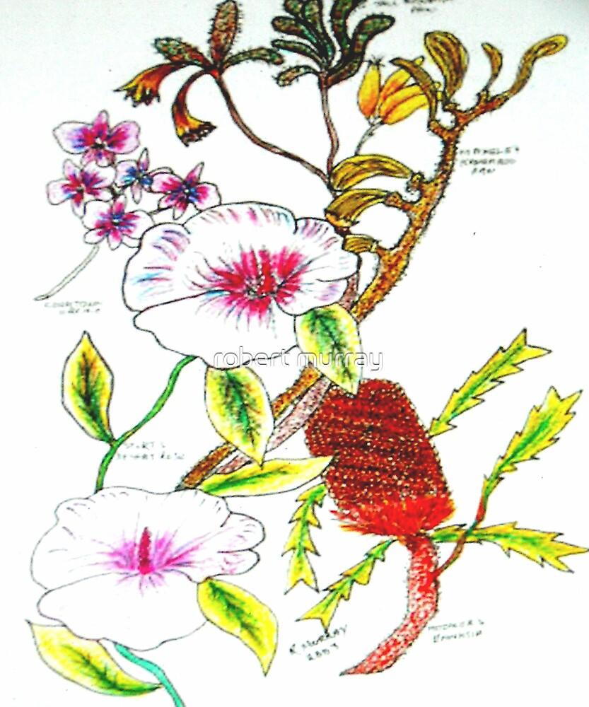 WA Wildflowers by robert murray