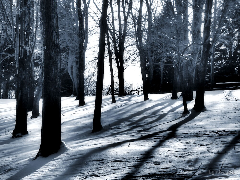 Shadows in the Woods by Lyndsay81