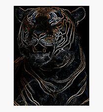 tiger, black shirt, colored tiger Photographic Print