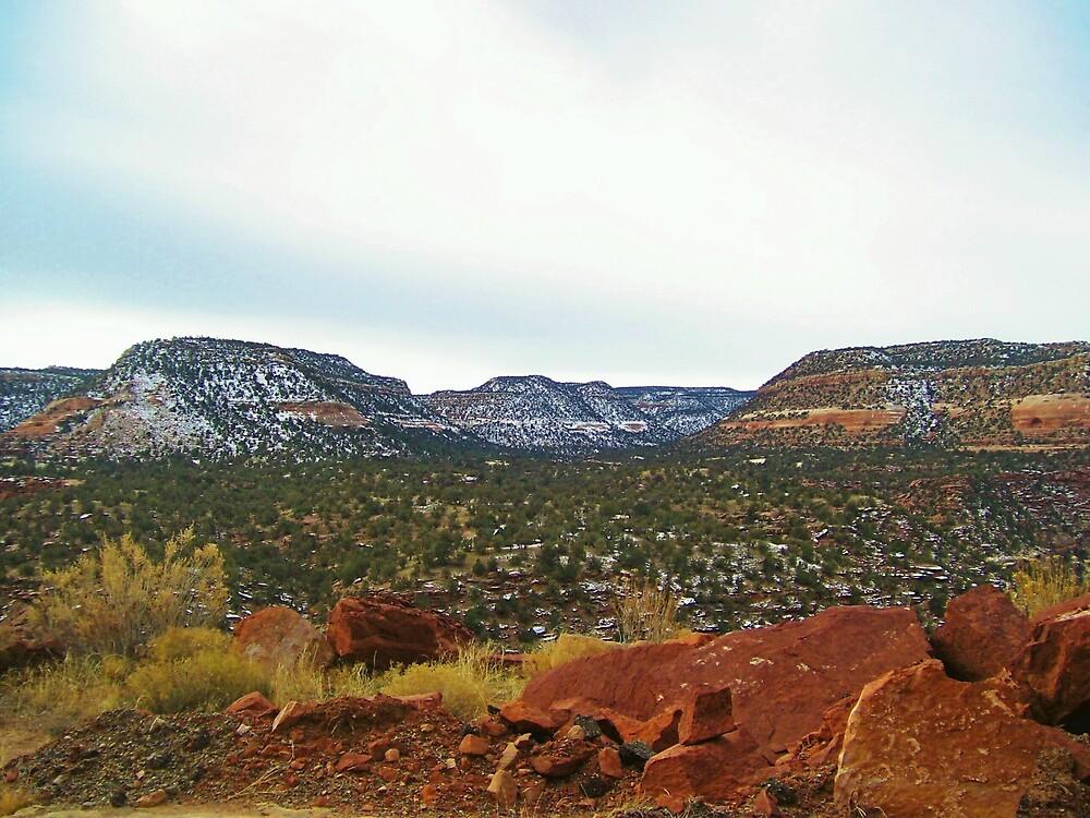 beyond the rocks by kristal ingersoll