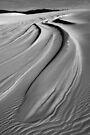 Dunes near Wau Wauka by Travis Easton