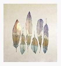 Mountain Birds Photographic Print