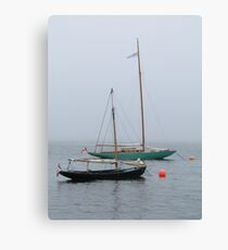 Beauty in the Fog Canvas Print