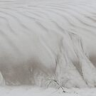 sand art by nature.... by gaylene
