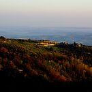 Tuscan evening by Ashley Ng