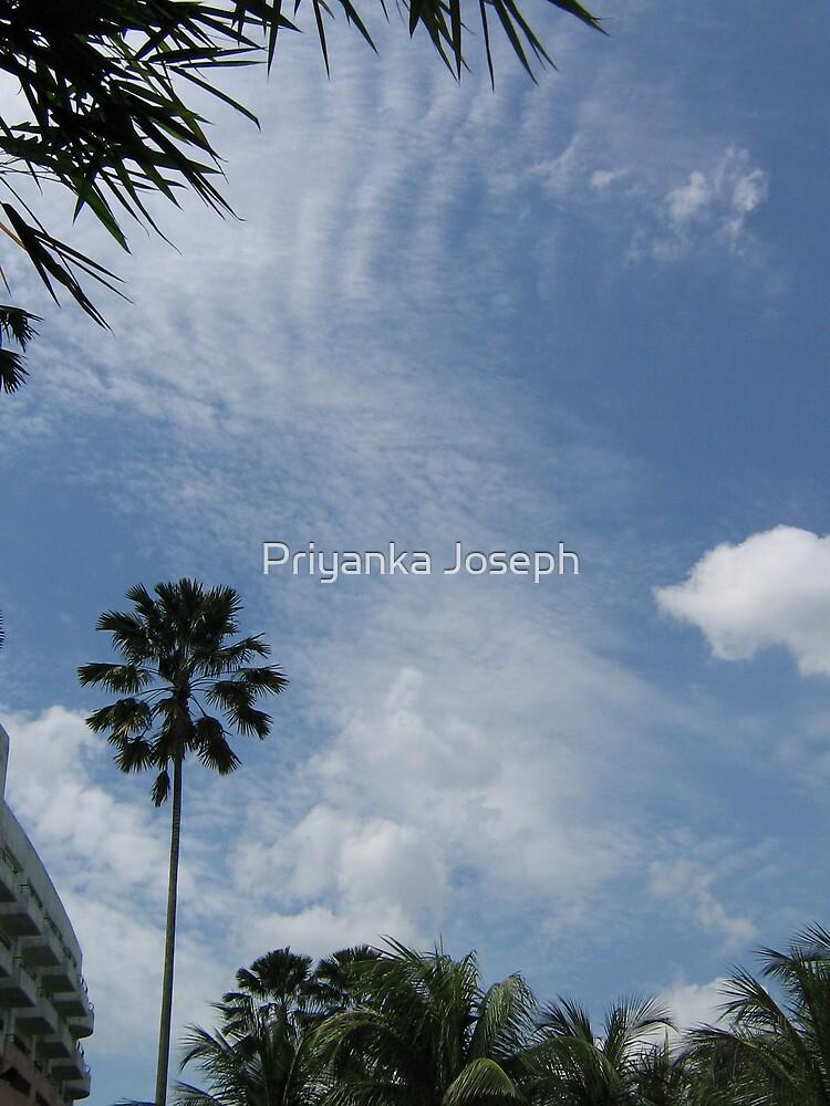 Tiger Blue Sky by Priyanka Joseph