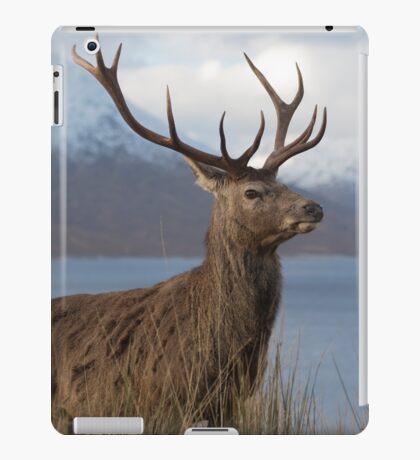 Red Deer Stag in Winter iPad Case/Skin