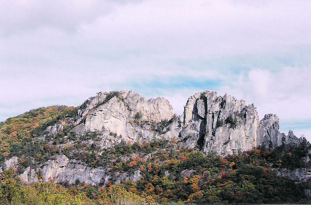 Rocky mountain by Jessie  Austin