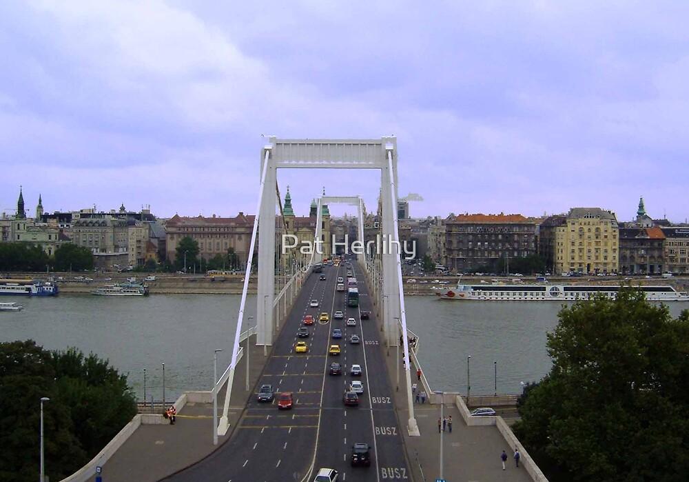 Elizabeth Bridge by Pat Herlihy