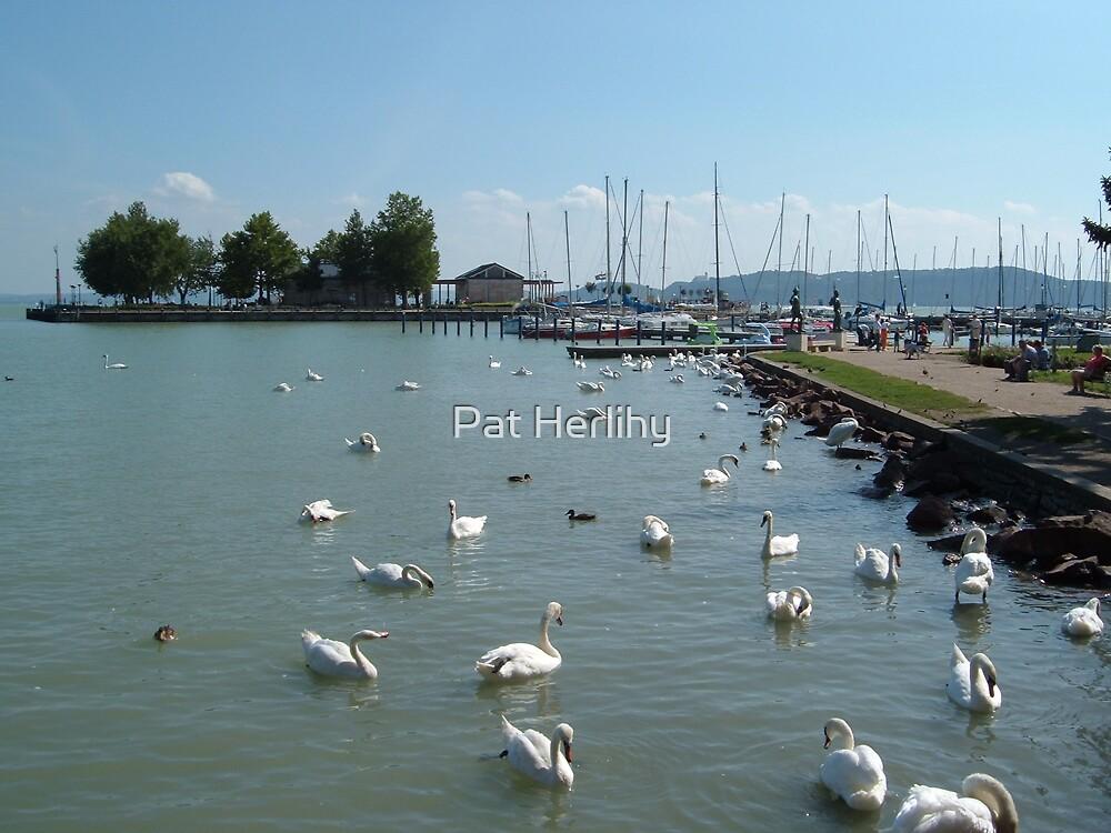 Lake Balaton - Hungary by Pat Herlihy