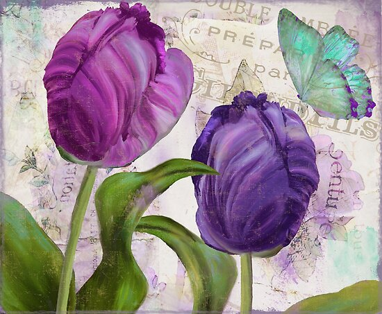 Purple Parrot Tulips by mindydidit