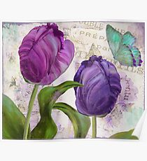 Purple Parrot Tulips Poster