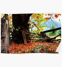 Through Autumns Golden Gown... Poster