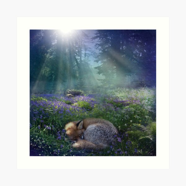 Bluebell Dawn Art Print