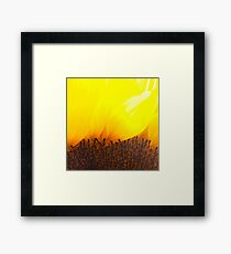 sunburn Framed Print