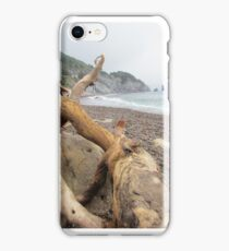 Cabot Trail iPhone Case/Skin