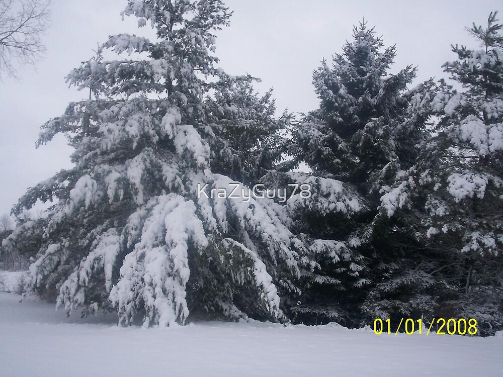snowy pines by KraZyGuy78