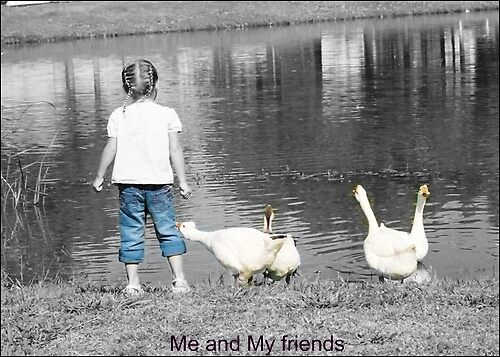 Me and My Friends by Kendra Norton