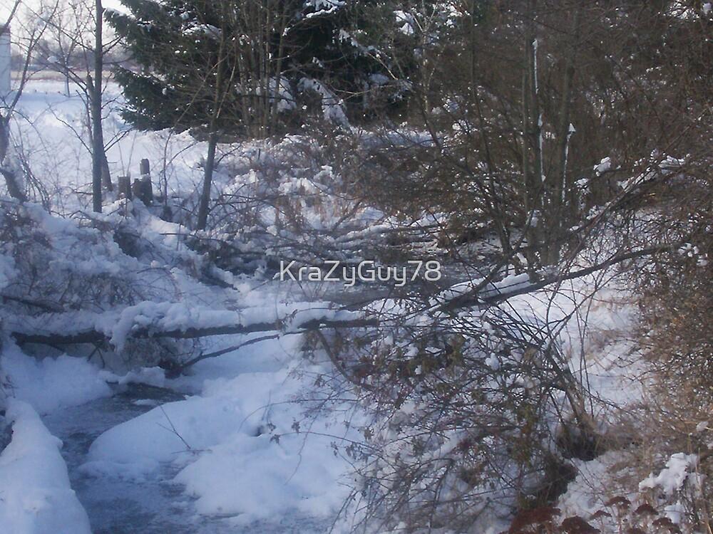 Snowy creek 4 by KraZyGuy78