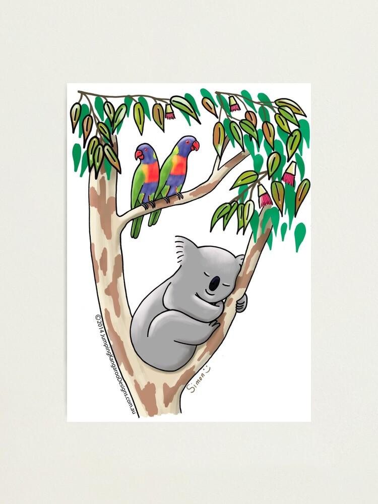 Alternate view of Sweet Dreams Sleeping Koala Photographic Print