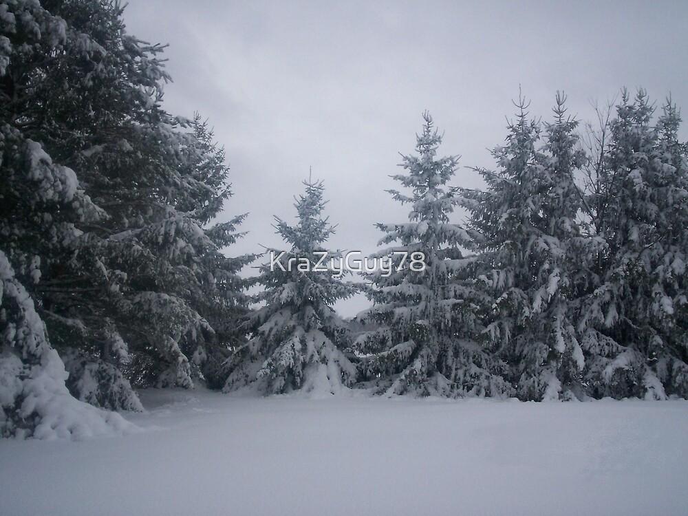 snowy pines 2 by KraZyGuy78