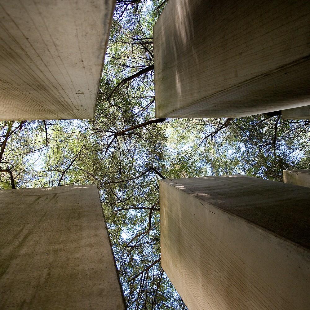 The Garden of Exile by Ramona Farrelly