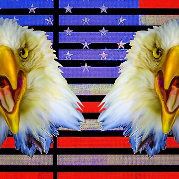 Double Screaming Bald Eagle heads on Stars and Stripes by Dalyn