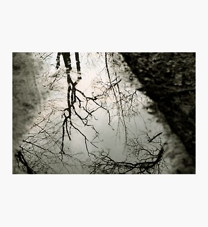 Reflection in a puddle Photographic Print