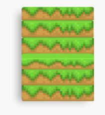 minecraft grass Canvas Print