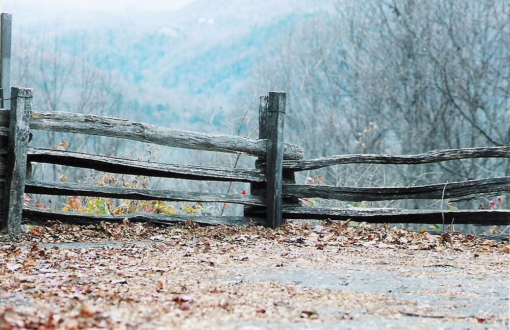 Fall Fences by Jessie  Austin