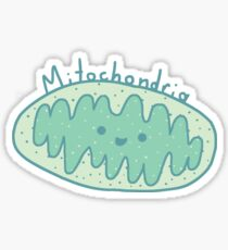 Mitochondria, Powerhouse of the Cell Sticker