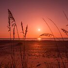 On the beach at sunrise by Zina Stromberg