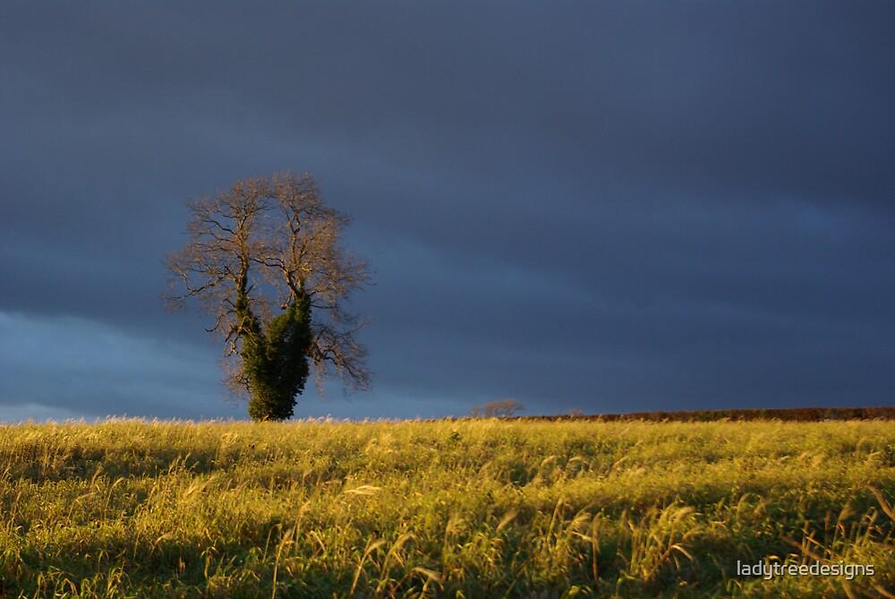 oak in a storm by ladytreedesigns