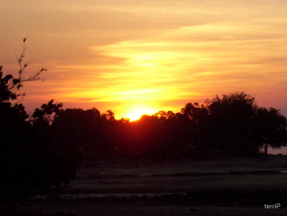 Sunrise in Wamuran by terriP