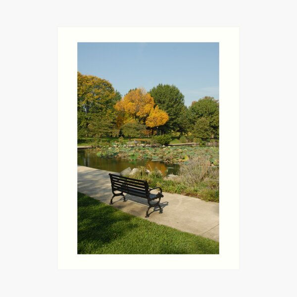 benched Art Print